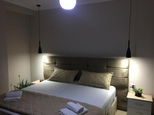 Guest's Apartament, Pogradecit