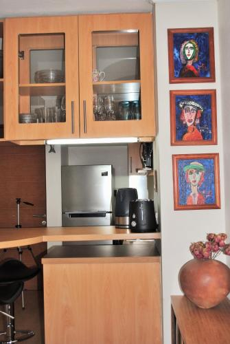 Studio Apartment En Providencia, Santiago