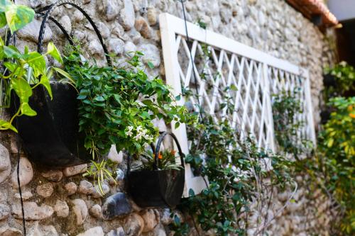 Kultura Hostel, Shkodrës