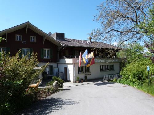Hotel Bellevue, Thun