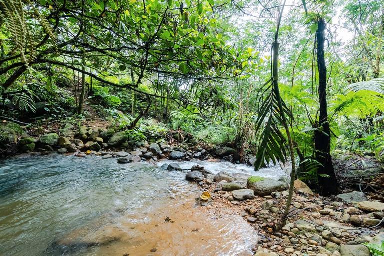 Glamping Forest Garden Batulayang, Bogor