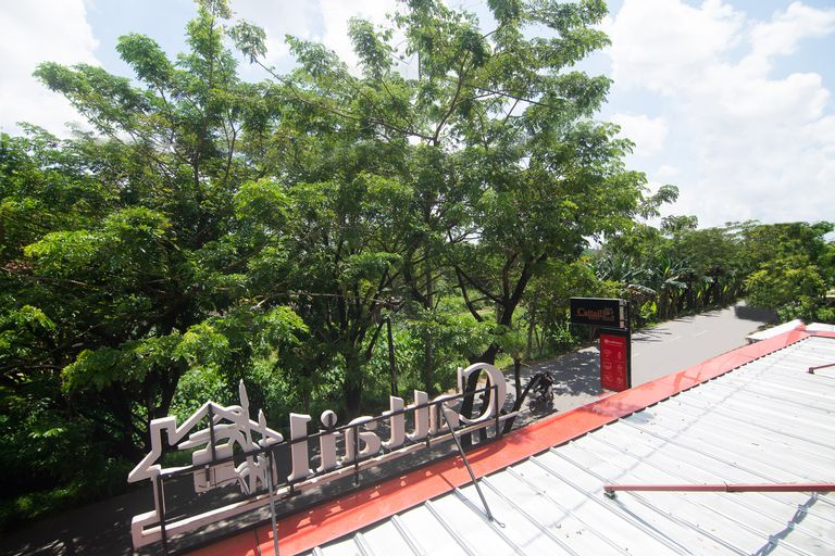 OYO 3729 Cattail Guest House, Pontianak