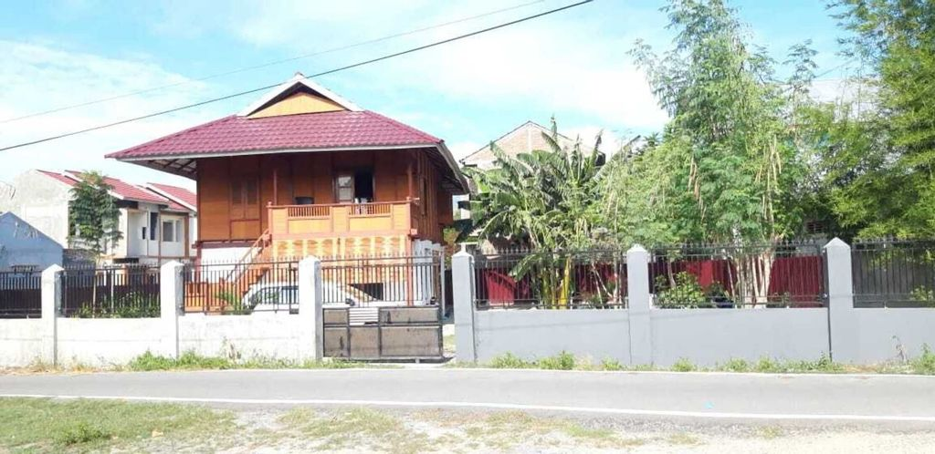 Comfortable, Great and Cheap, Palu