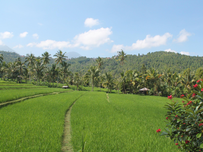 Amartya Puri Green Cottages, Buleleng