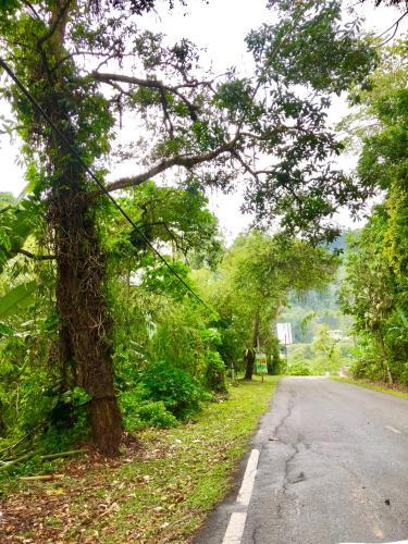 Selesa Resort homestay, Bentong