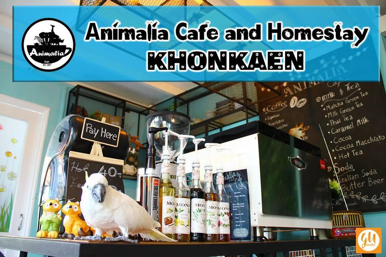 Animalia cafe and homestay (Pet-friendly), Muang Khon Kaen