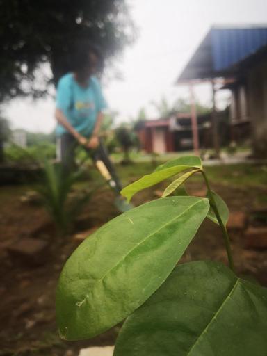 Anjung Sentosa Homestay, Hulu Selangor