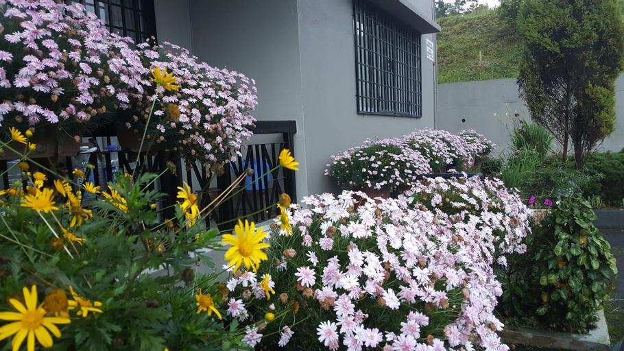 KPW at Royal Lily Apartment, Cameron Highlands