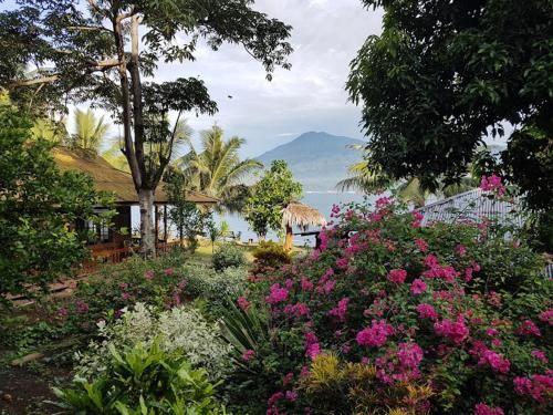 Two Fish Resort Lembeh, Bitung
