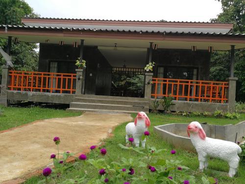Home Garden Chaeson บ้านสวน ชวนฝัน, Mueang Pan