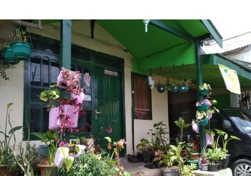 Homestay Silvy Syariah Dieng, Wonosobo