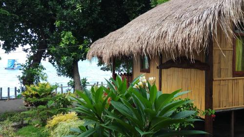 Lena house Flores, Sikka