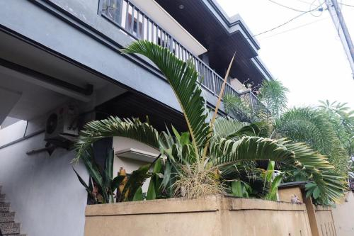 Adi surya guest house, Badung