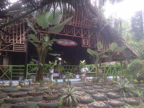 Pondok Wisata Guesthouse, Aceh Tenggara