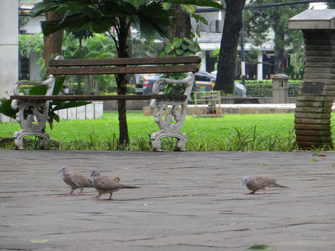 Sahaja, Central Jakarta
