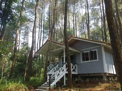 The Pine Forest Villas, Bogor