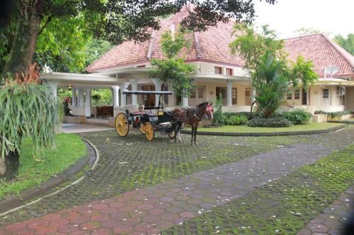Omah Kertonegoro, Yogyakarta
