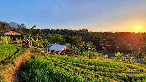 Hara Bali Eco Homestay, Tabanan