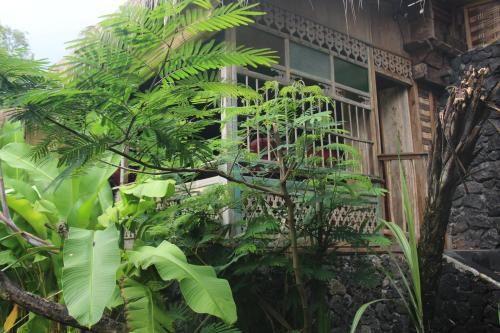 Geopark Village, Bangli