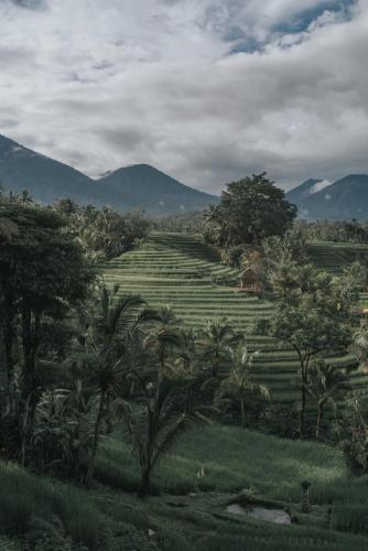 Saridevi Ecolodge, Tabanan