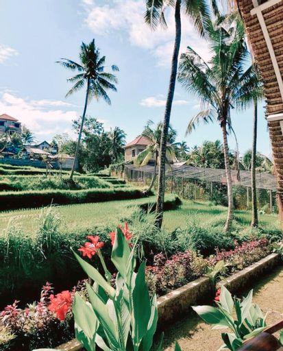 Pertivi Bali, Buleleng
