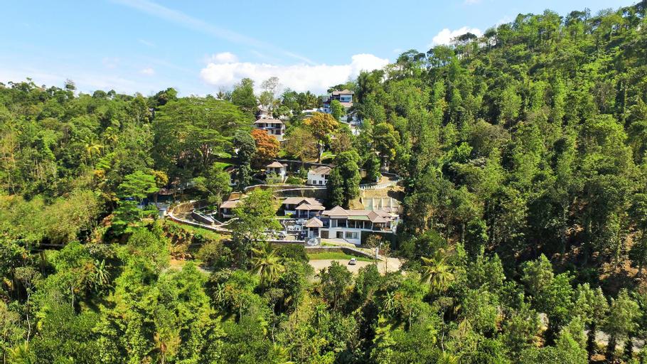 Forest Canopy Resort, Idukki