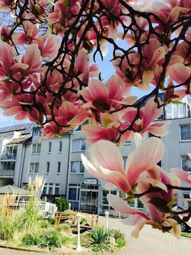 Hotel Astoria City Resort, Essen