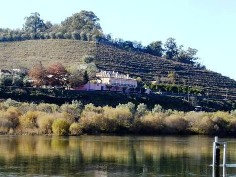 Casa Dos Varais, Manor House, Lamego