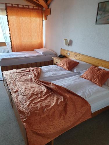 Bellevue Baren Hotel & Restaurant, Frutigen