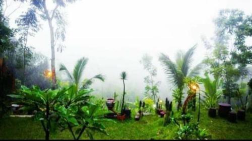 Tetebatu Mountain Resort, Lombok