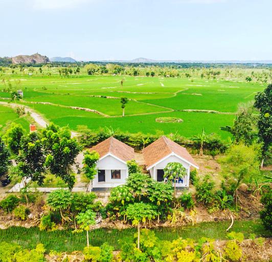Tommy Homestay, Lombok