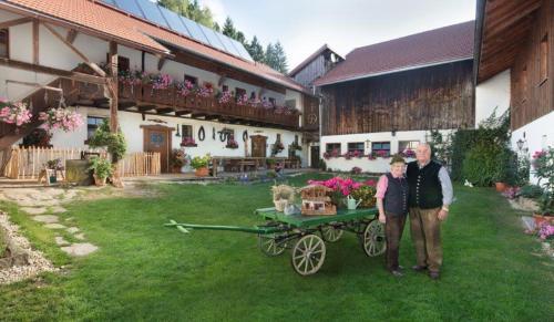 Bayerwald-Ferienhof Schmid, Freyung-Grafenau