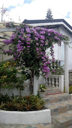 The Guest house, Tagaytay City