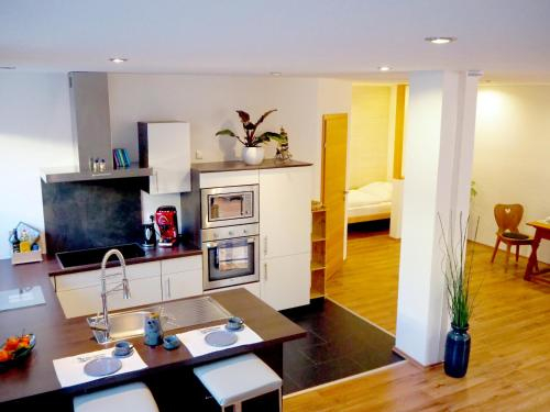 Apartment Loidl Ebensee, Gmunden