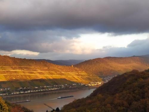 Schau-Rhein#2 - on Top of Bacharach, Rhineview, Mainz-Bingen