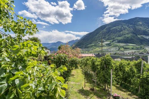 Ferienwohnung Golserhof, Bolzano