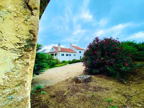 Quinta da Vergueira, Figueiró dos Vinhos