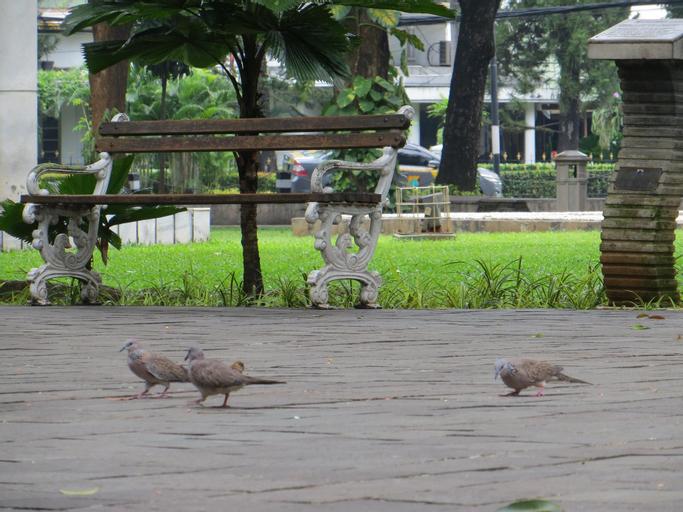 Kost Ruko Biru, East Jakarta