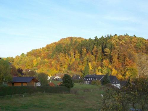Serene Apartment near Ski Area in Hesborn, Hochsauerlandkreis