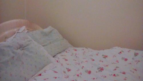 Spurs Executive female Over Night Stay, London
