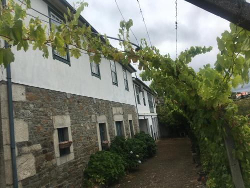 Quinta Casa Do Quintal, Lamego