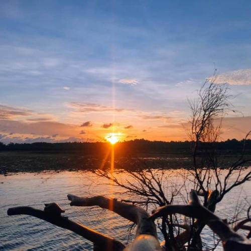 BINTAN COOL, Bintan Regency