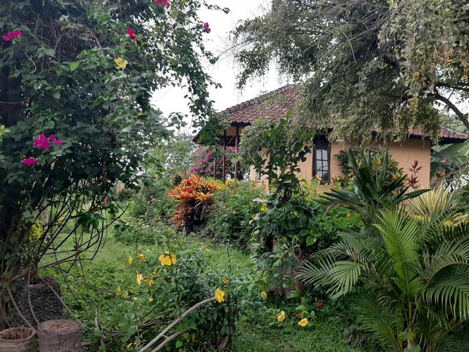 Balelangga Bed & Breakfast, Lombok
