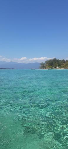 Coco Bale, Lombok