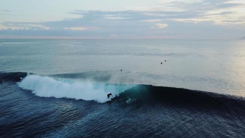 Mambo Surf, Dompu