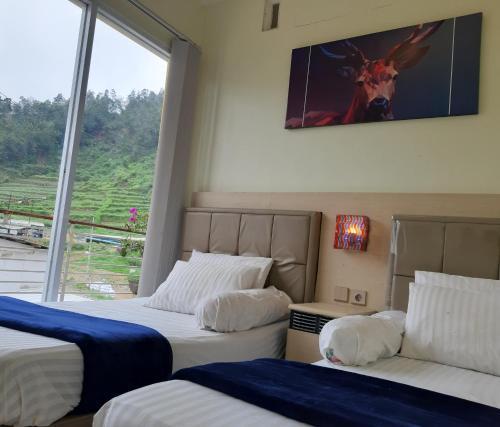 Homestay Dieng Cool Full House 6 Rooms, Wonosobo